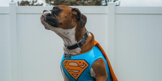 super-november-sales