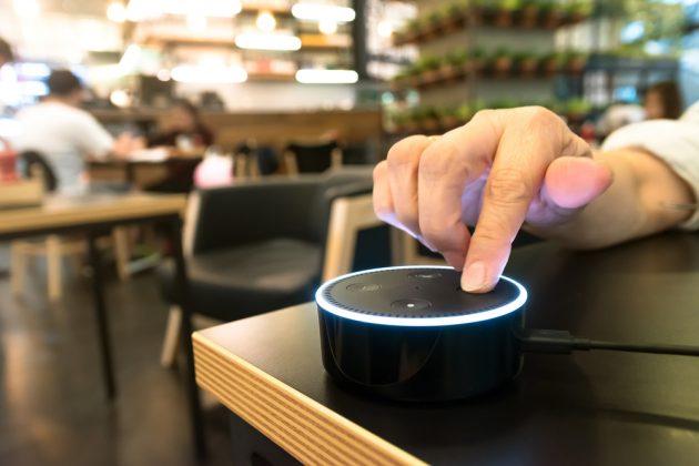 Alexa's speaker